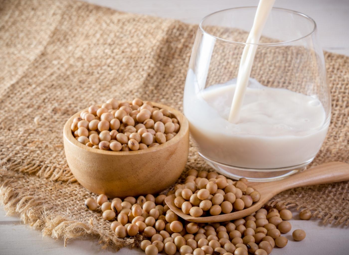 Grão de soja e leite de soja