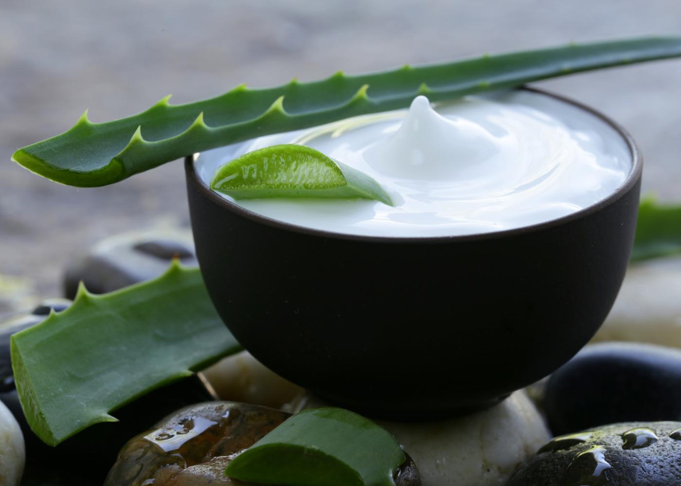 aloe vera no tratamento da acne mascara de aloe vera