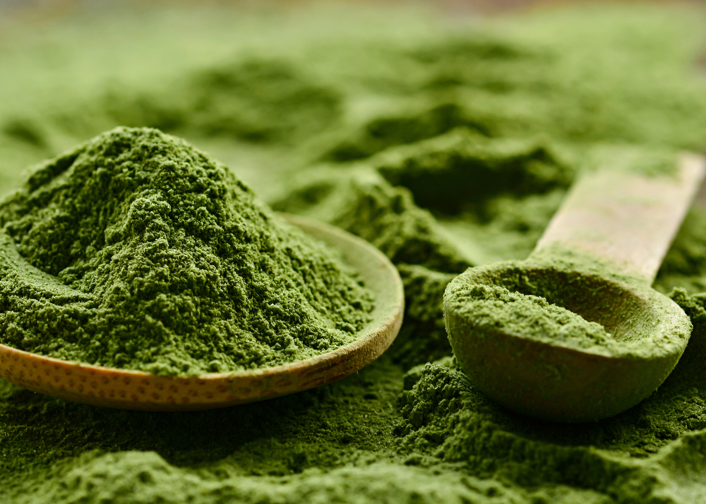 lista de superalimentos alga clorela