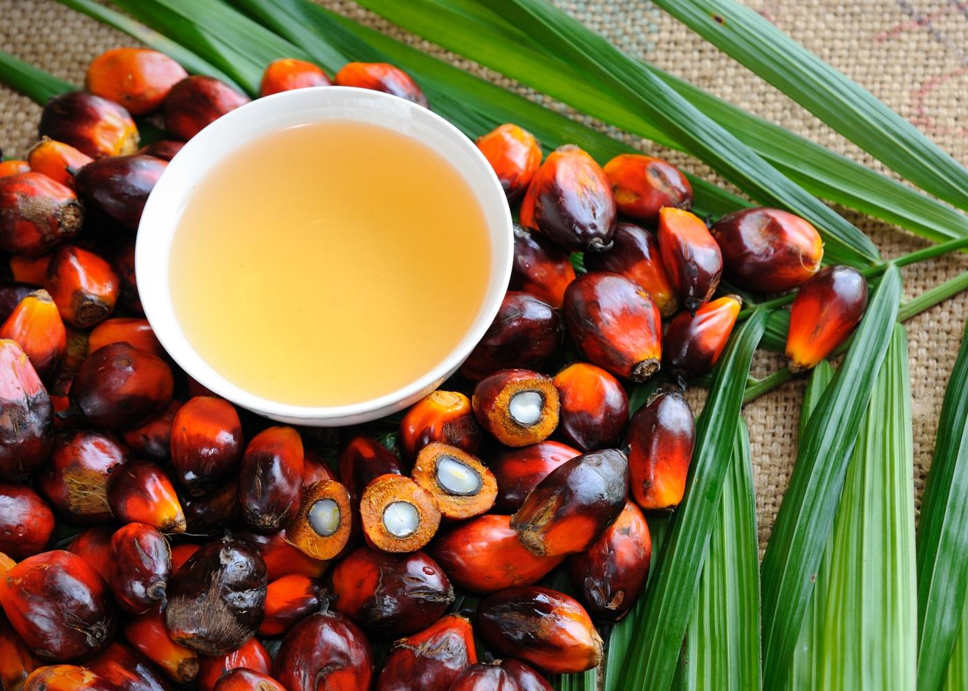 Taça com óleo de palma