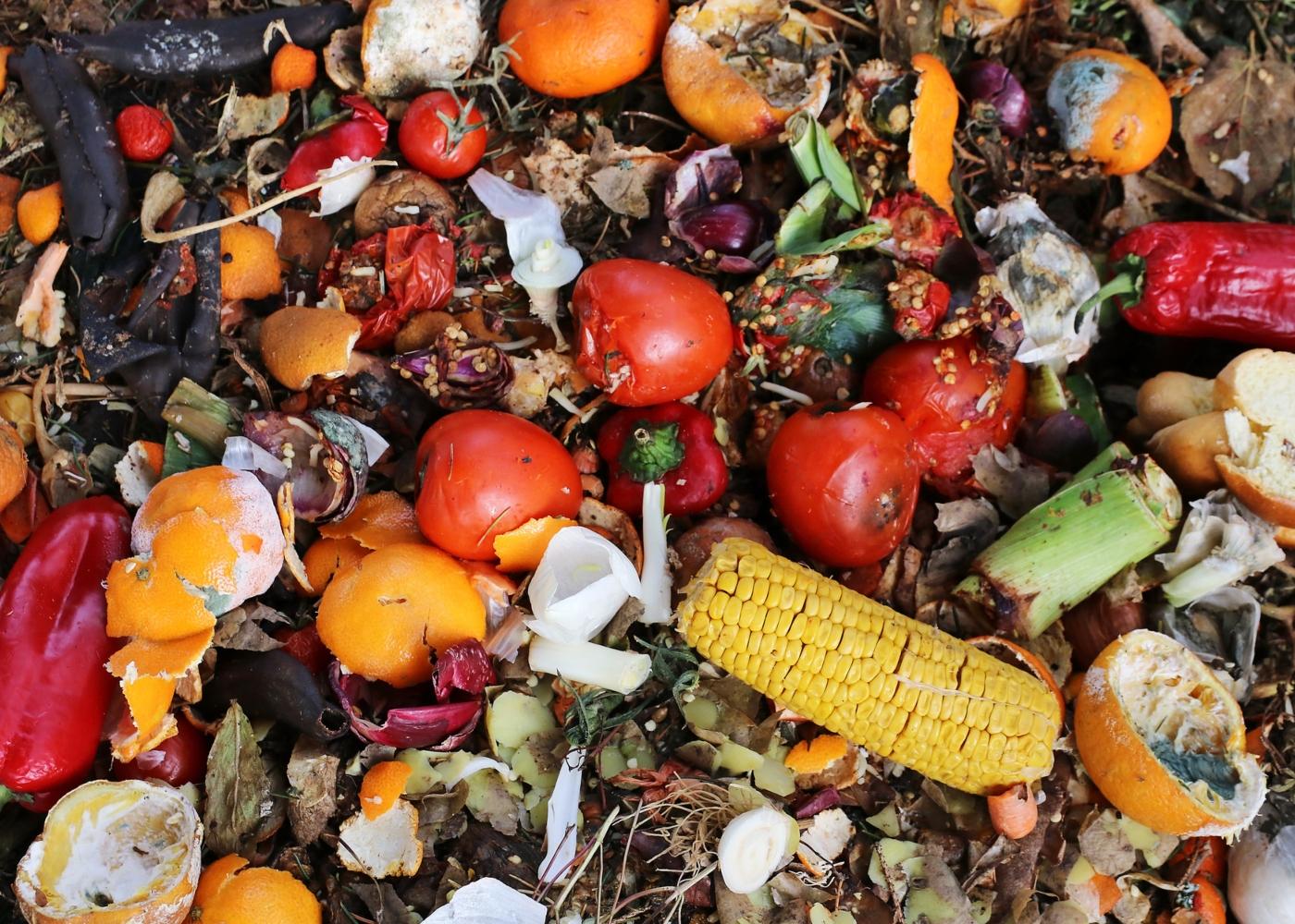 Variedade de alimentos no lixo