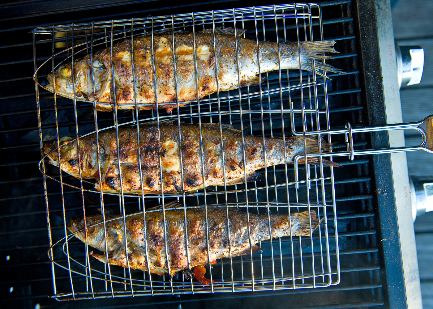 peixe na grelha para assar nas brasas