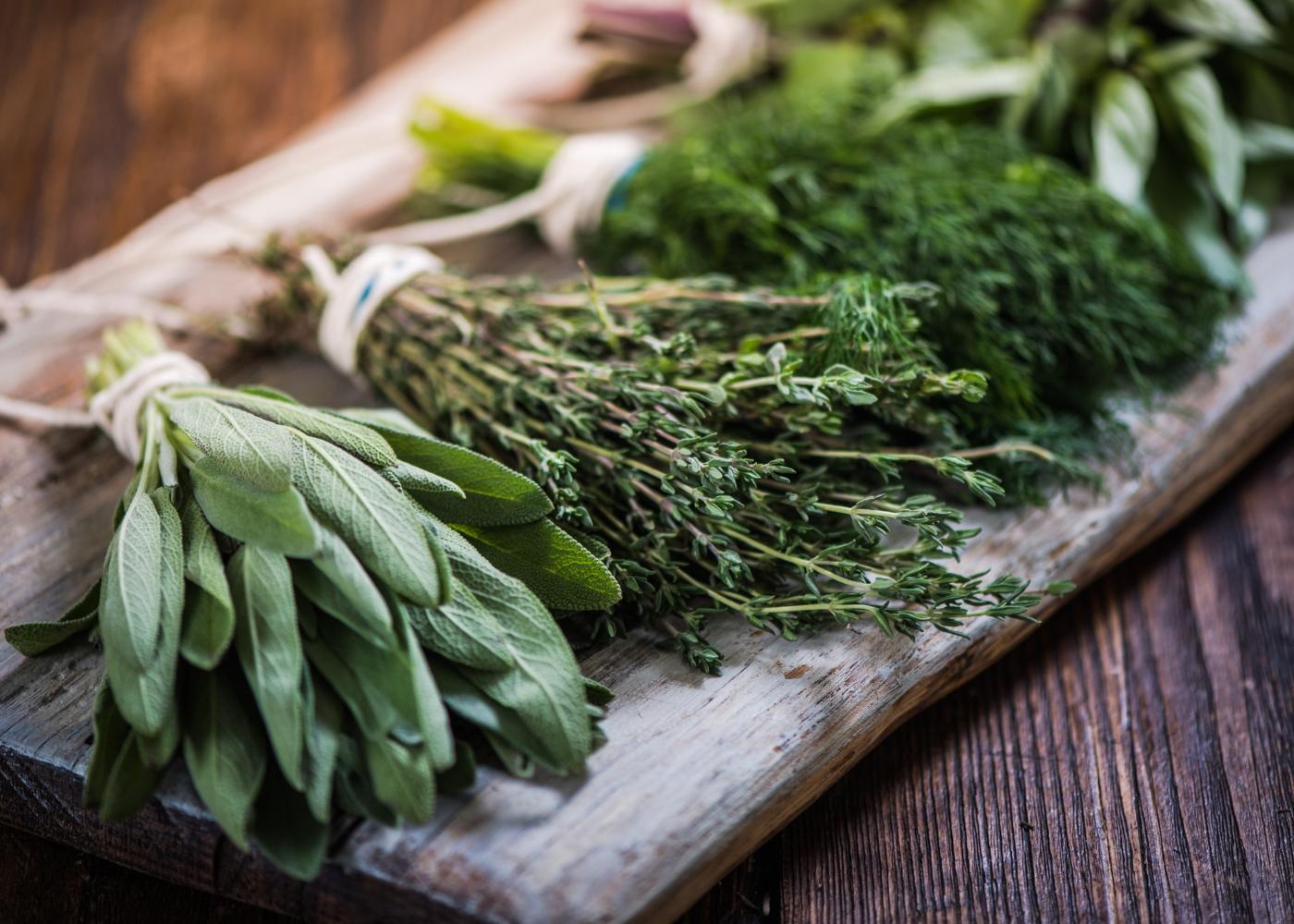 Substitutos do sal: ervas aromátivas