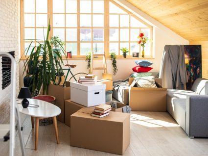 Perturbação de acumulação: casa cheia de tralha