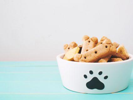 receitas de biscoitos para caes