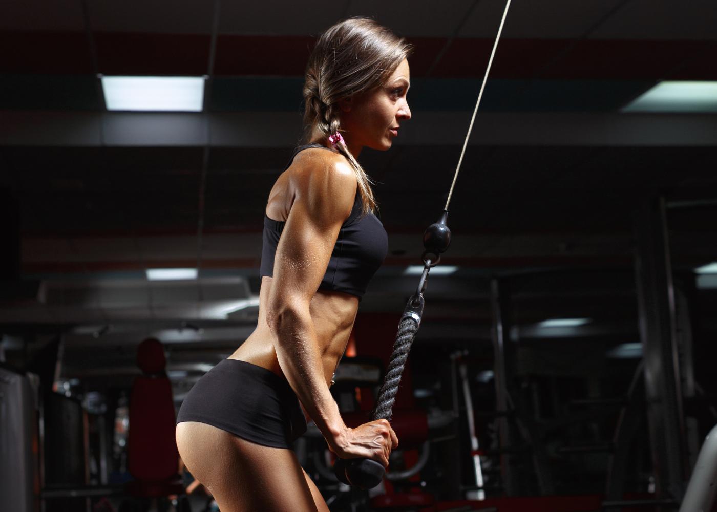 exercicios de musculacao para tricep