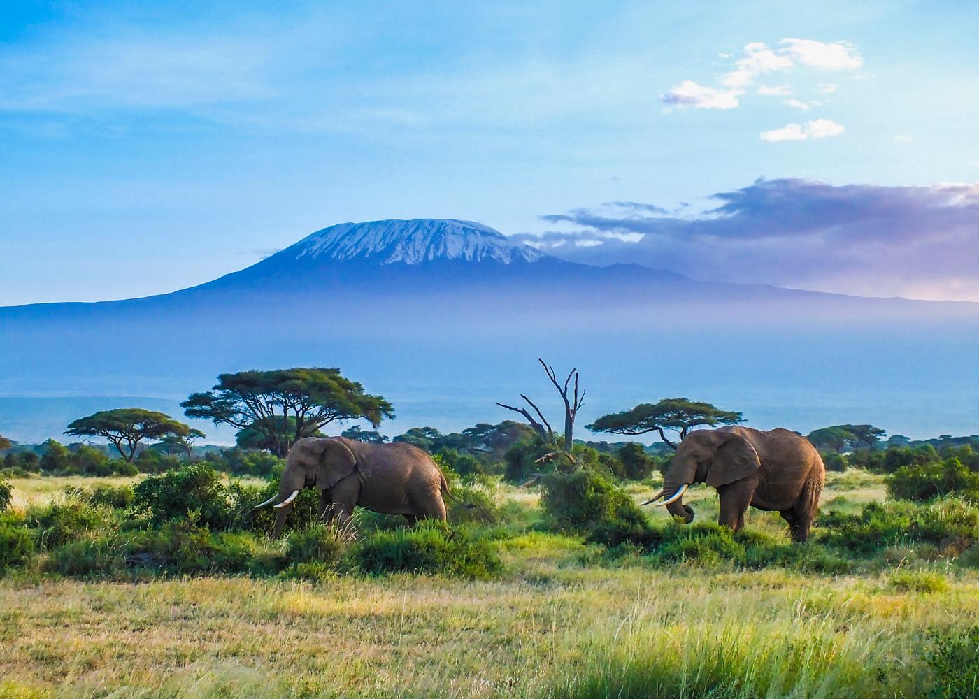 destinos paradisiacos baratos tanzania