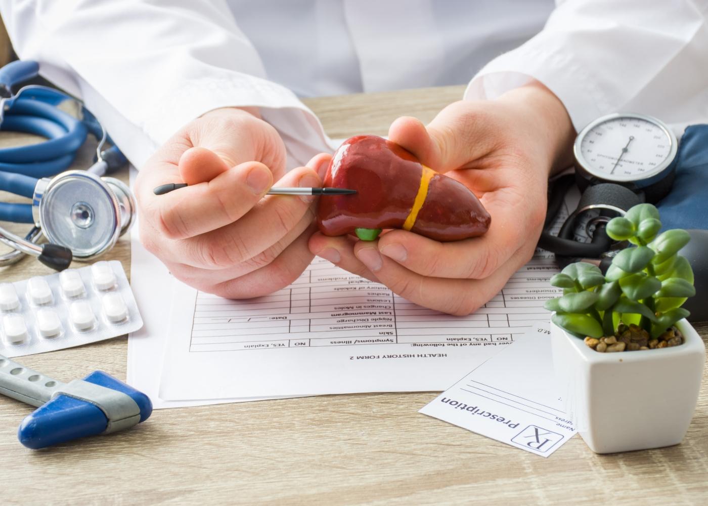 Médico a mostrar maquete de vesícula a paciente
