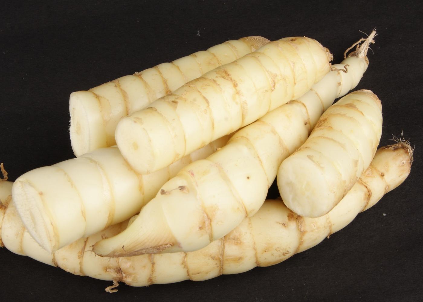 alimentos naturalmente sem glúten que substituem a farinha de trigo: araruta