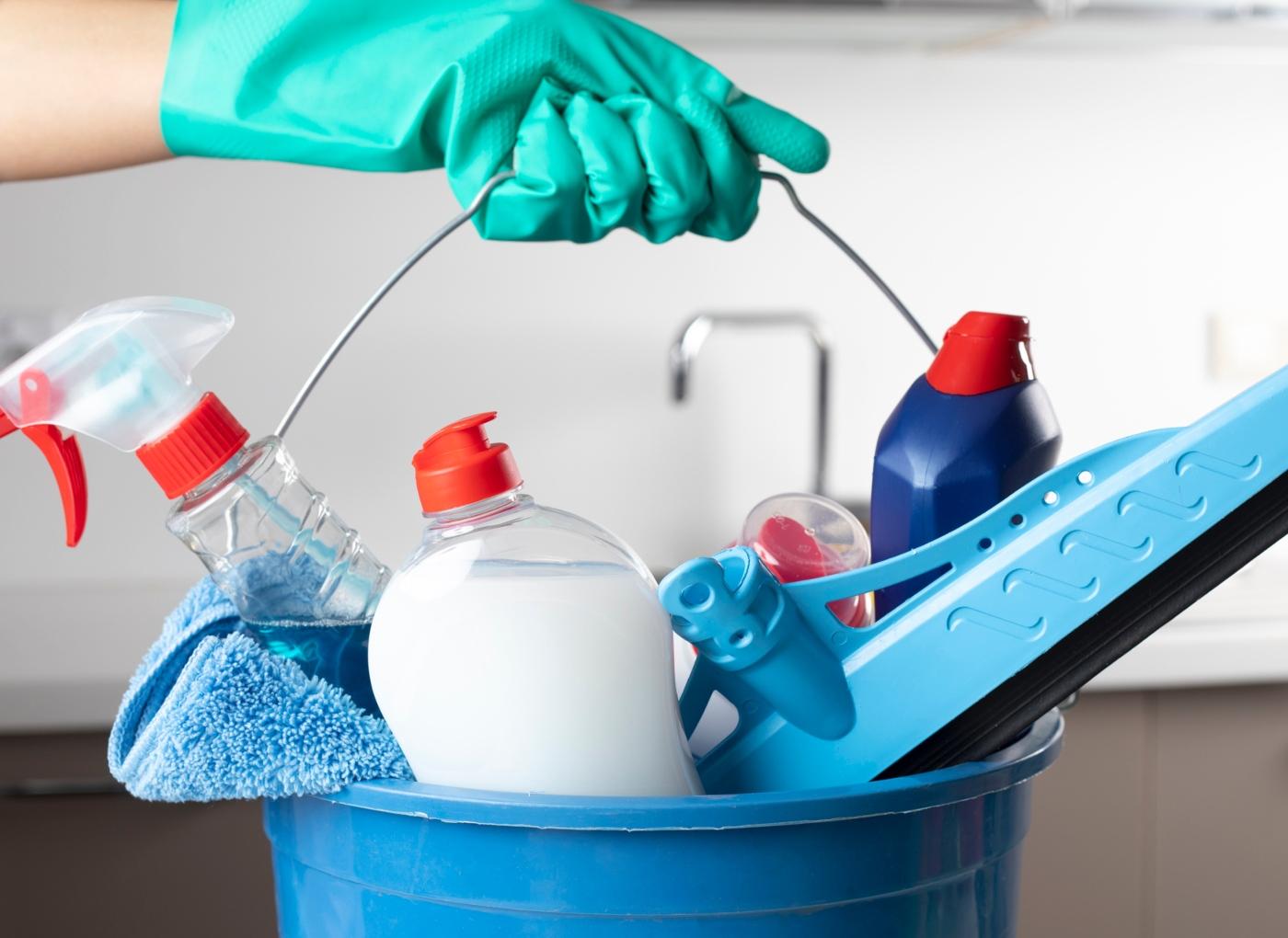 Manter a casa limpa para prevenir as micoses em animais