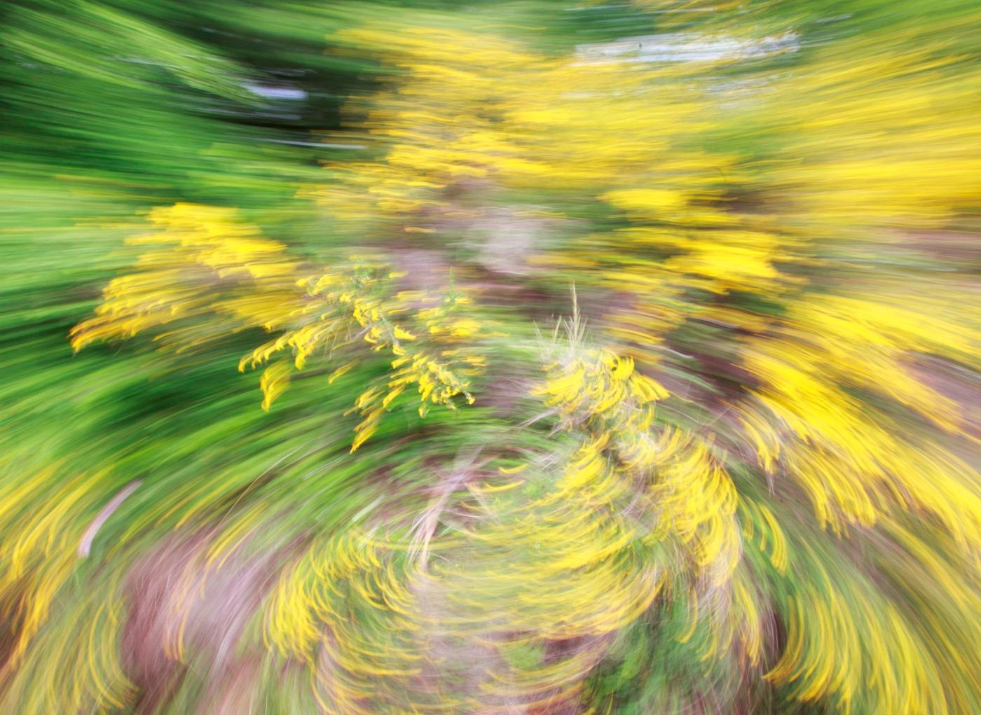 Síndrome vertiginoso: sensação de vertigem
