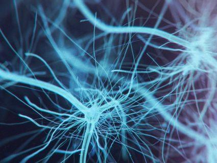 Esclerose Lateral Amiotrófica: causas, sintomas e tratamento