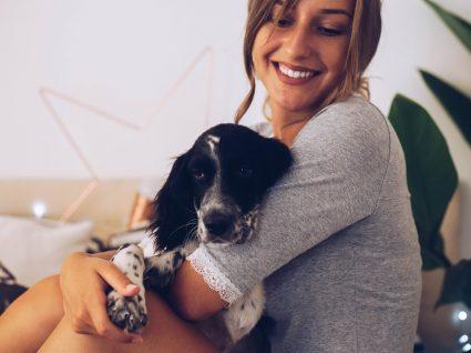 Enxoval para cães: sabe o que precisa de comprar?