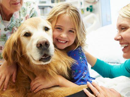 Benefícios da terapia com animais no autismo