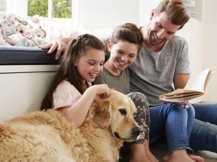Adotar um cão: 5 coisas que deve saber antes de tomar uma decisão