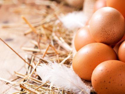 Como sabe que tipo de ovos está a comer? Nós ensinamos a reconhecer!