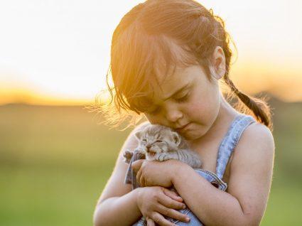 Gatos e crianças: como fazer esta relação resultar?
