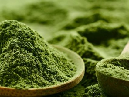 Microalgas: propriedades nutricionais, aplicações futuras e cuidados a ter
