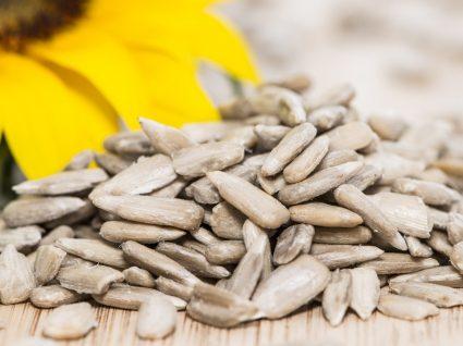 Os 6 principais benefícios das sementes de girassol