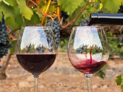 Beba vinho... mas com moderação!