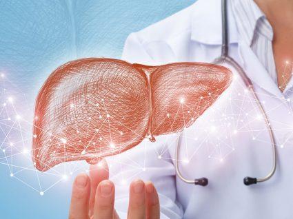 Fígado gordo: causas, sintomas e tratamento da doença