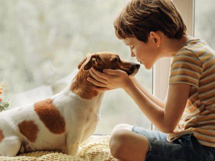 As melhores raças de cães para quem tem crianças