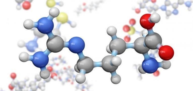 aminoacidos nao essenciais