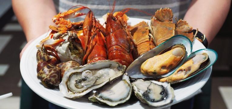 alimentos que aumentam o acido urico prato com marisco