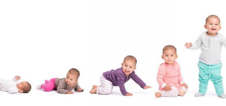 o que bebes e criancas devem aprender etapas crescimento