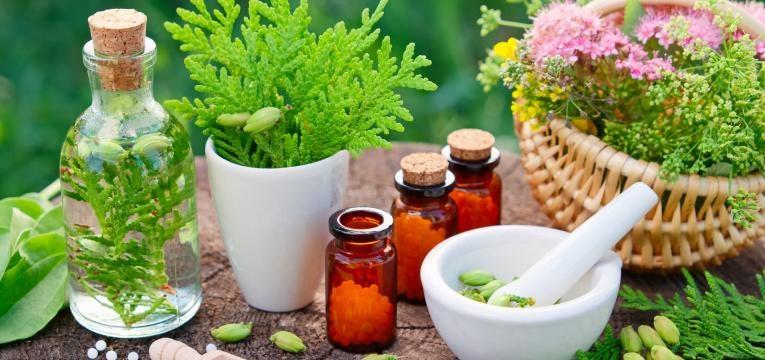 homeopatia folhas no almofariz