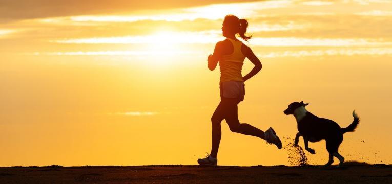 exercitar o seu cao dona e cao a correr