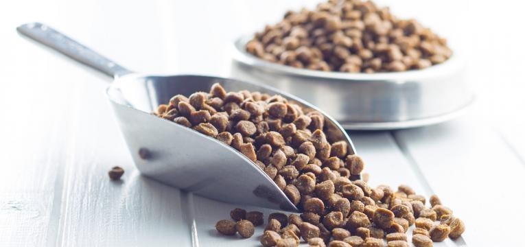 racao seca ou humida comida seca na gamela