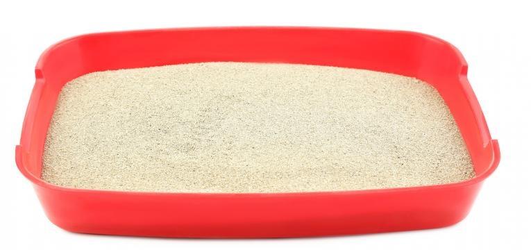 qual a melhor areia para gato areia granulada