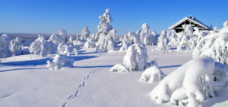 destinos de ferias na neve Saariselka