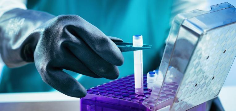 criopreservacao de celulas estaminais: banco publico ou privado
