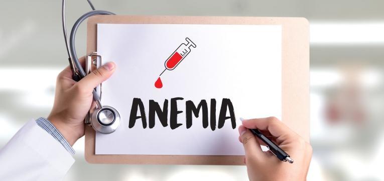 leguminosas anemia