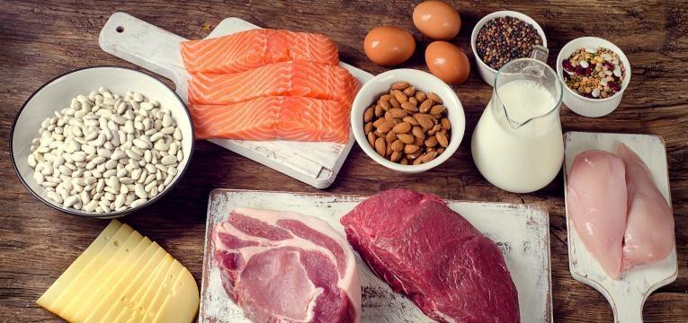 perder massa gorda alimentos ricos em proteina