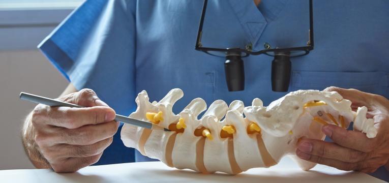 bicos de papagaio vertebras coluna