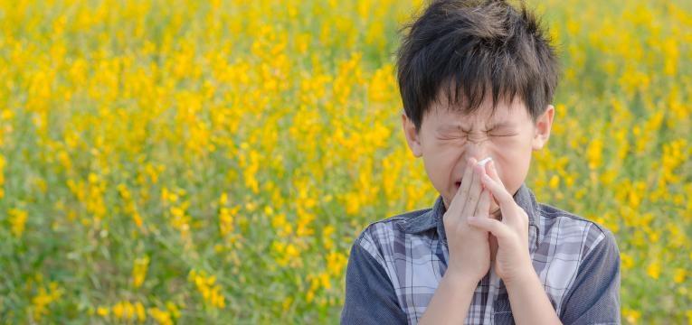 alergia ao polen menino com alergias