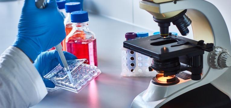duvidas sobre a criopreservacao analise laboratorial