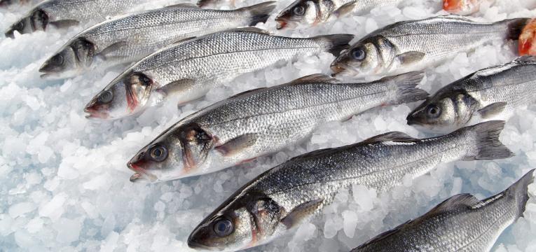 peixe fresco no gelo da banca