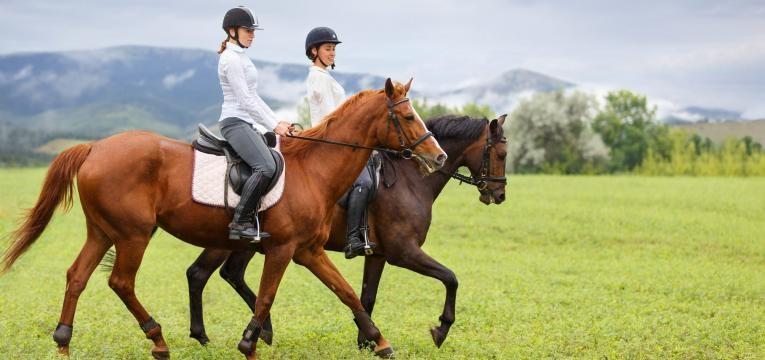surpresas para o dia da mae passeio a cavalo