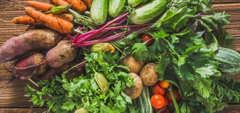 agricultura biologica produtos biologicos