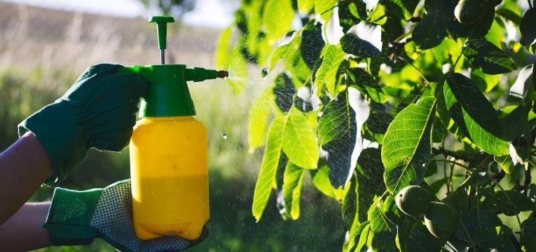 mitos da agricultura biologica pesticidas