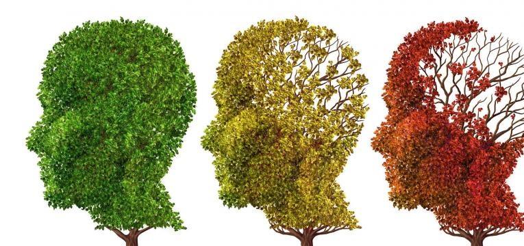 alimentacao e alzheimer estado da doenca