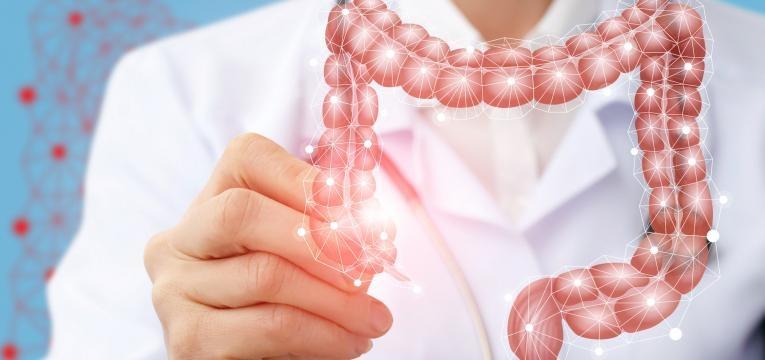 alimentacao na doenca de Crohn intestinos