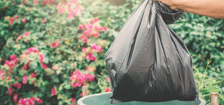 leptospirose saco do lixo fechado