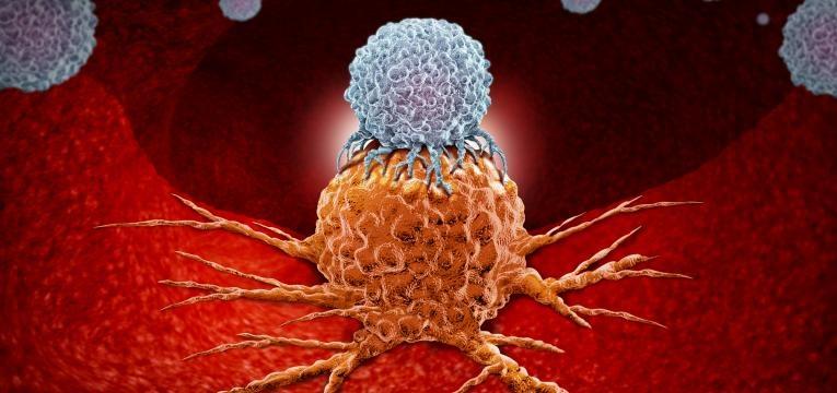 lupus eritematoso sistemico anticorpos antigenio