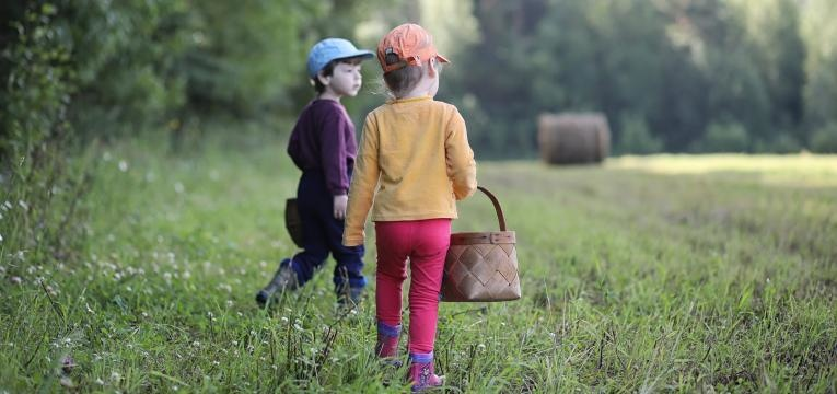 picada de carraca meninos no campo