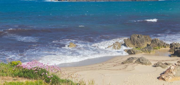 praias da costa vicentina porto covo